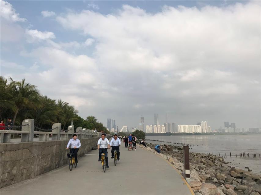傅军委员建议:将共享单车纳入公共交通的组成部分