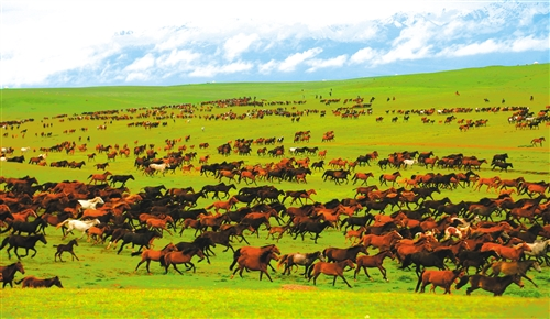 《【恒达在线注册】有一种美,叫新疆的美》